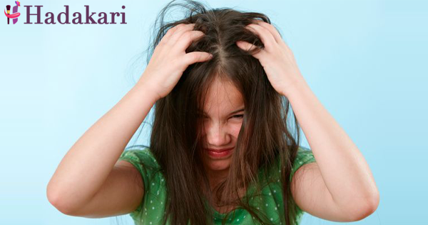 Is your child suffer because of head lice?